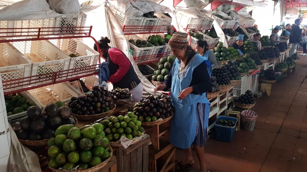 5 Avocado Market