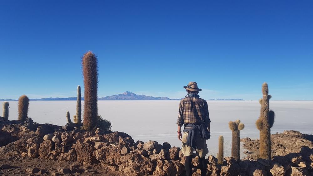25 isle of cactuses