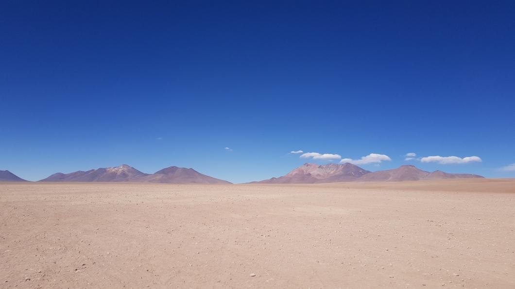 31 desert