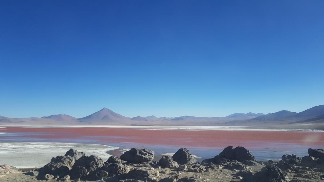 33 red lagoon